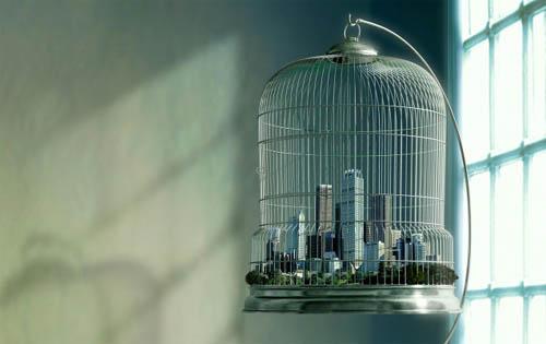 Bird Cage Metropolis