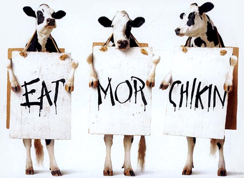 Anti-Beef | Eat More Chikin