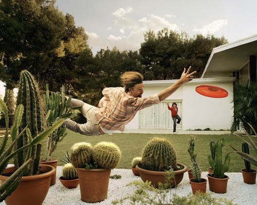 Frisbee Cactus Hazard