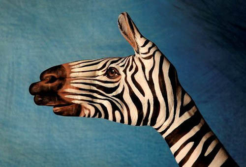 Painted Zebra Hand Puppet