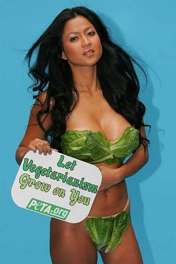 Lettuce Lingerie | Peta Campaign