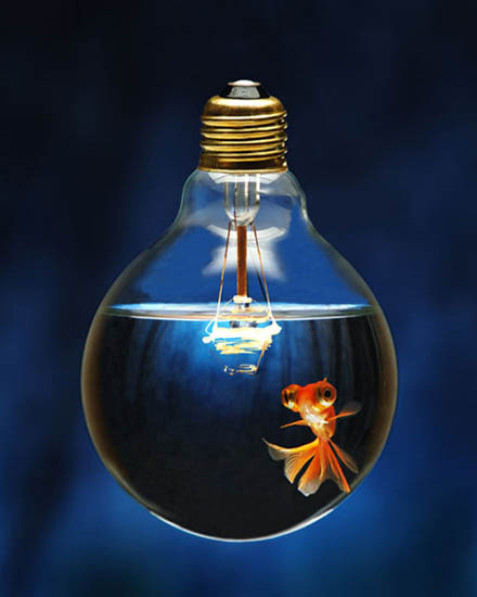 Fishy Idea | Incandescent Fish Bowl