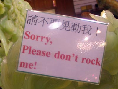 Please Don't Rock Me!