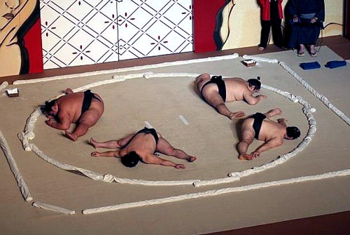 Surprisingly Flexible Sumo Wrestlers