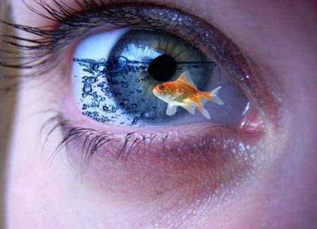 Photoshop Manipulation | Goldfish Eye Aquarium