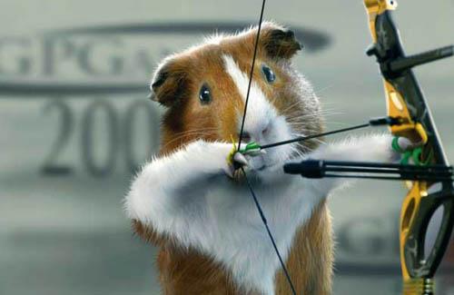 Guinea Pig Games | Archery