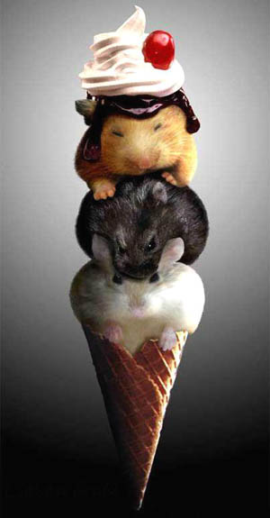 Mouse Ice-Cream Cone