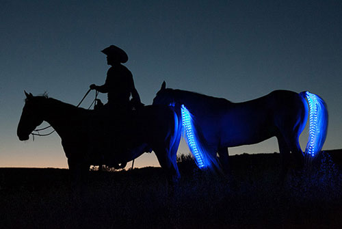Horse Tail LED String Lights