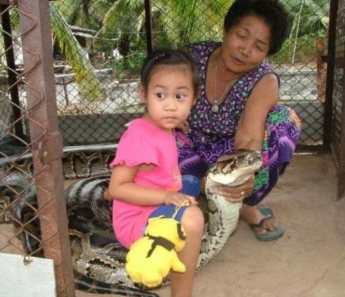Snake Petting Zoo
