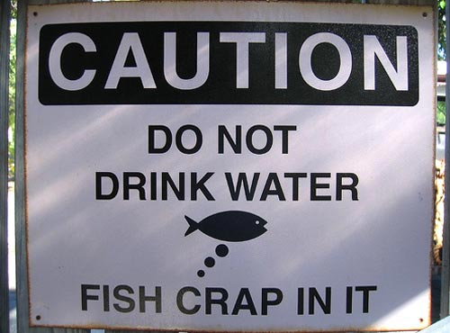Do Not Drink Water | Fish Crap In It