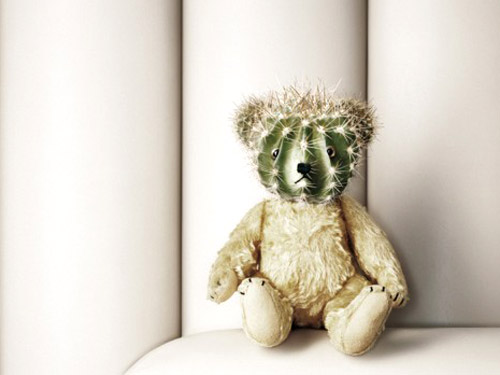 Cactus Head Teddy Bear