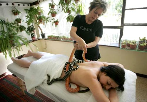 snake massage Kobra Snake Massage to Women at Surrey Theme Park
