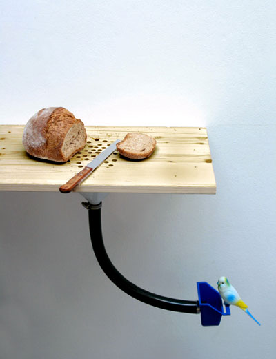 Bread Crumb Bird Feeder