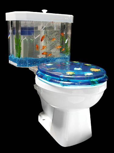 Fish Bowl Toilet