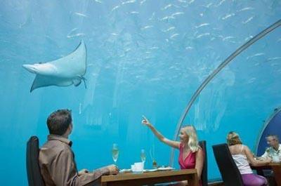Hilton Maldives Ithaa Undersea Restaurant