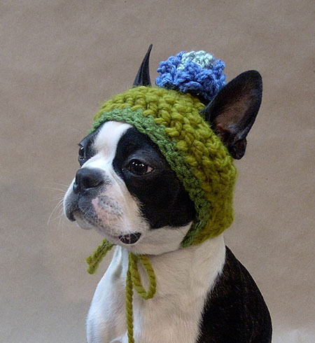 Crocheted Dog Hat