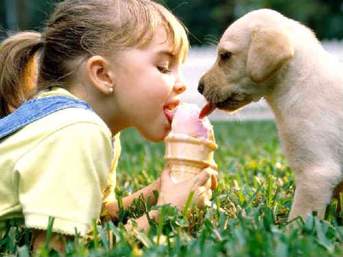 Sharing An Ice Cream Cone With Puppy