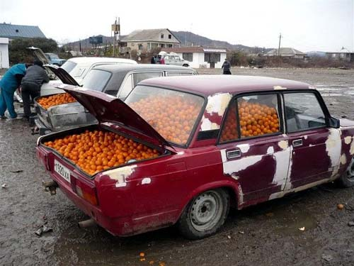 Car Full Of Oranges