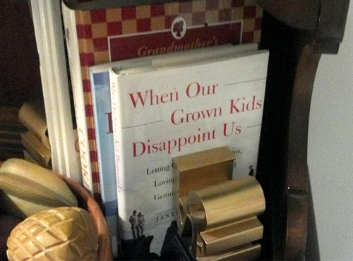 Self Help Book For Baby Boomers - When Our Grown Kids Disappoint US