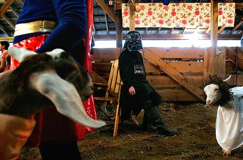 Darth Vadar with Farm Animals