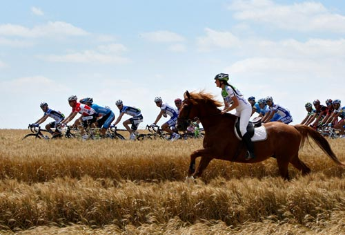 Tour de France Horse vs Cyclists