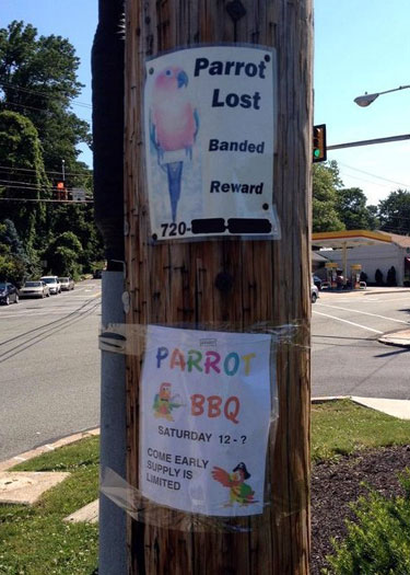 Lost Parrot Sign And Parrot BBQ Invite Sign